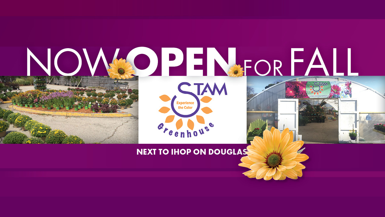 2017-STAMS-NOW-OPEN-WEB-SLIDER-